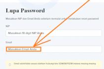 Cara Mengatasi Lupa Email My SAPK BKN